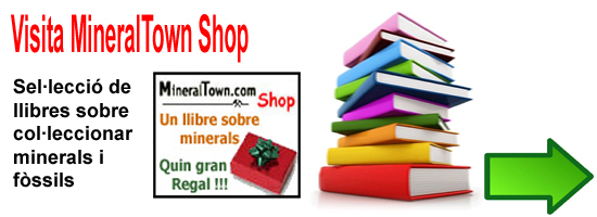 Mineraltown Shop